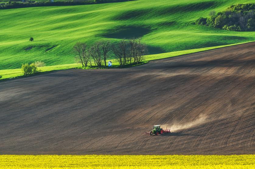 Jorge Azevedo, CAP: Desafios para a alimentação e agricultura mundiais