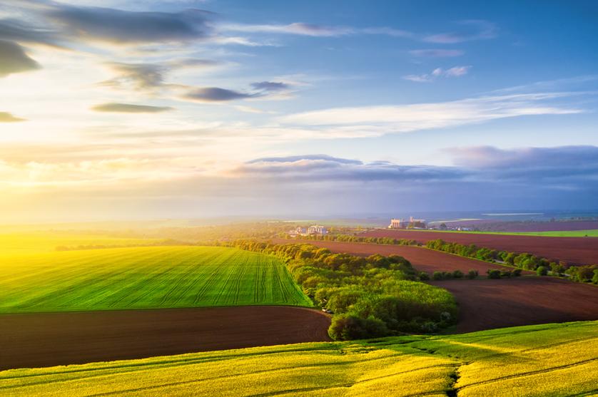 O que sabemos do trabalho e da missão dos produtores agrícolas?
